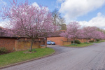 Exclusive Enton Hall Development, Near Godalming 6