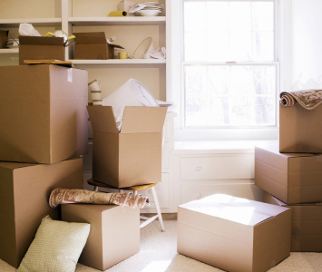 Top Tips for Moving Day Bliss