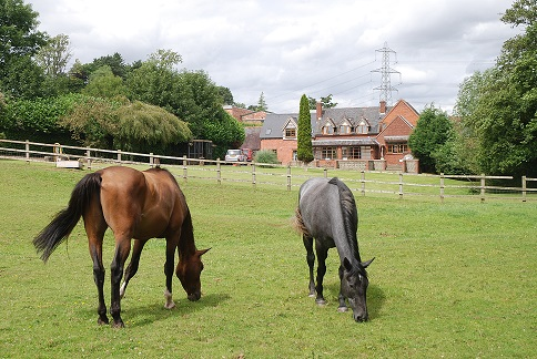 Equestrian Property